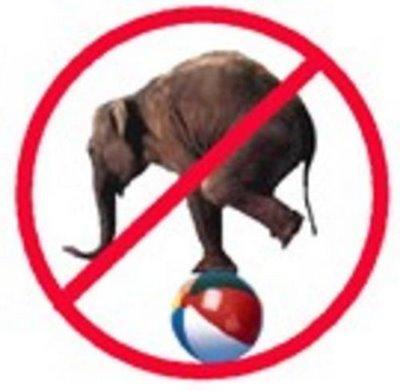 Nova acció de protesta contra l'ús d'animals en circs (demà dissabte!)